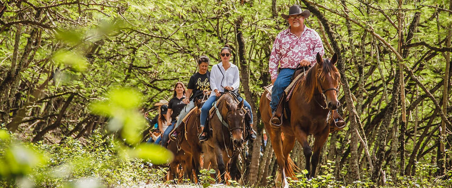 Explore Oahu's famous North Shore on horseback