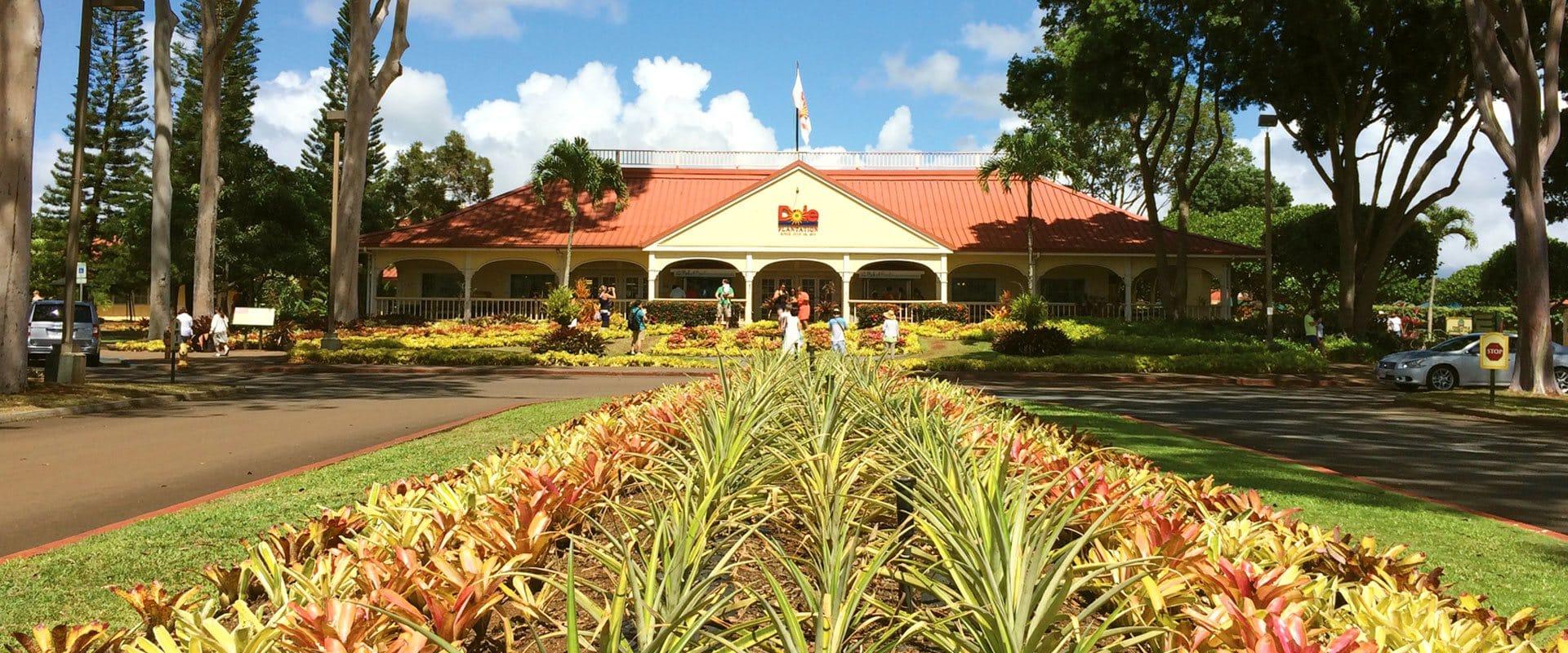 Dole Plantation Hawaii's Pineapple Experience