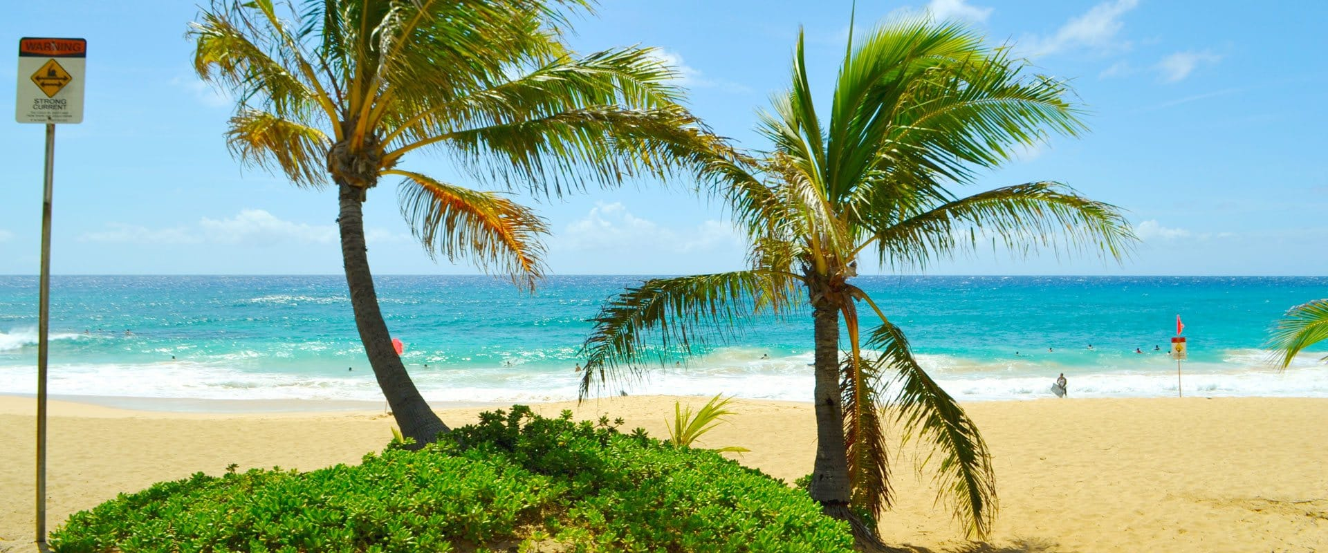 Visit the world famous North Shore beaches